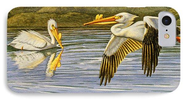 Breeding Season- White Pelicans Phone Case by Paul Krapf