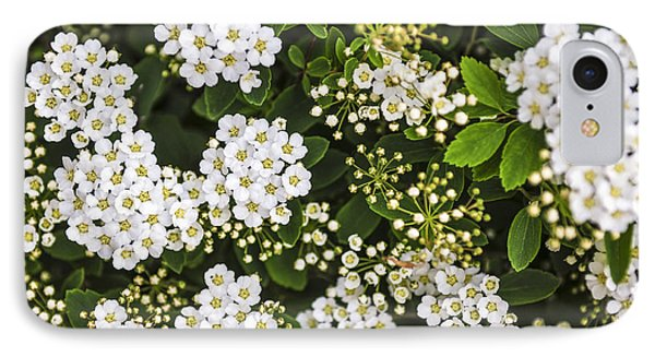 Bridal Wreath Flowers IPhone Case