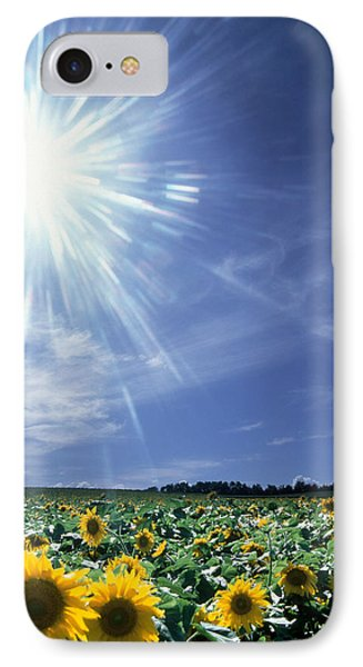 Bright Burst Of White Light Above Field IPhone Case
