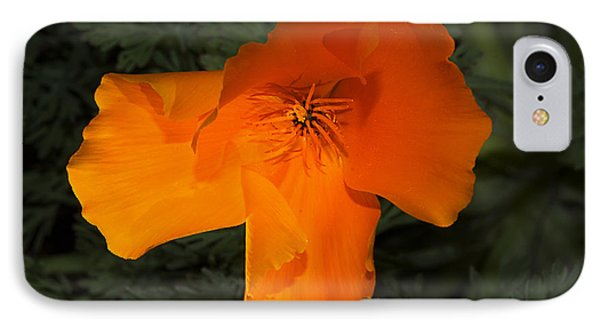 Bright California Poppy IPhone Case