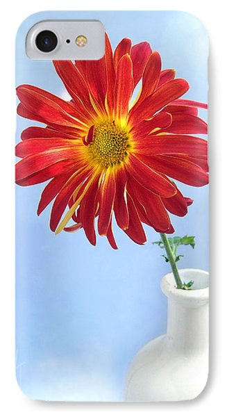 IPhone Case featuring the photograph Bright Day Daisy by Louise Kumpf