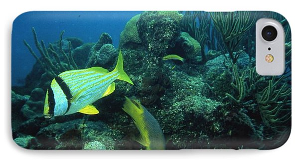 Bright Fish IPhone Case by Retro Images Archive