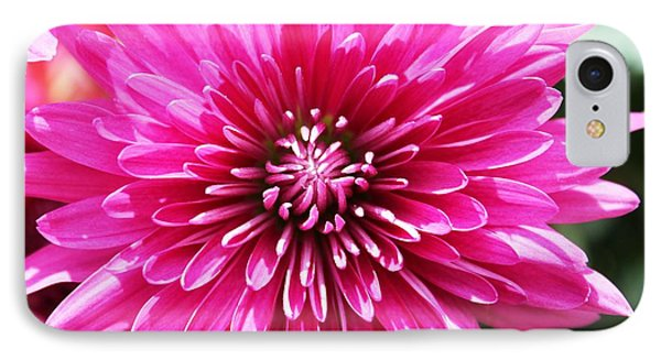 IPhone Case featuring the photograph Bright Pink Mum by Judy Palkimas