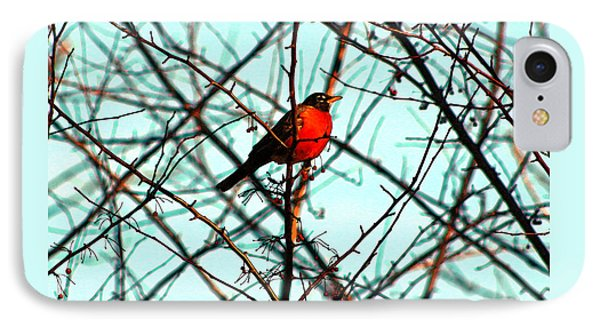 Bright Red Robin IPhone Case