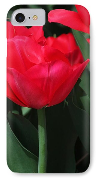 IPhone Case featuring the photograph Bright Red Tulip by Bill Woodstock