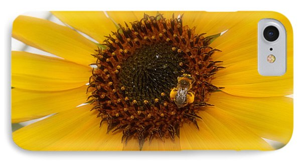 IPhone Case featuring the photograph Vibrant Bright Yellow Sunflower With Honey Bee  by Jerry Cowart