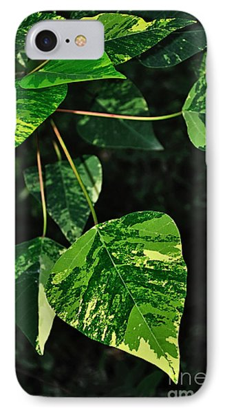 Bright Variegated Leaves Phone Case by Kaye Menner