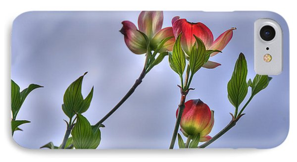 IPhone Case featuring the photograph Brillant Springtime by Wanda Krack