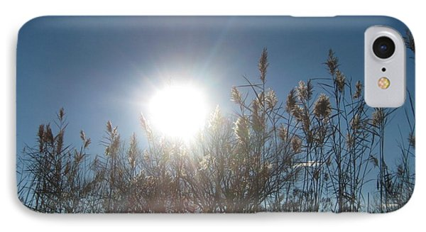 Brilliance In The Grasses IPhone Case