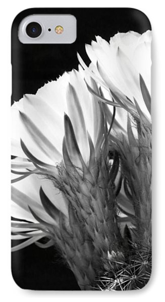 Brilliant Blossoms Diptych Left Phone Case by Kelley King