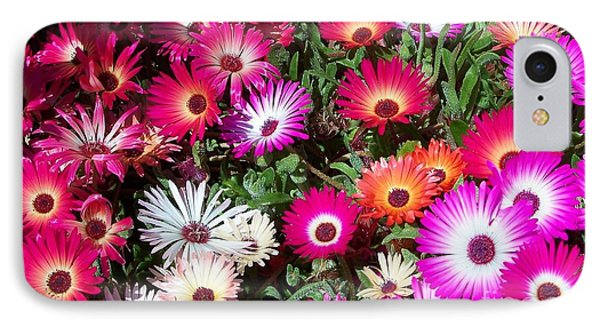 IPhone Case featuring the photograph Brilliant Flowers by Chalet Roome-Rigdon