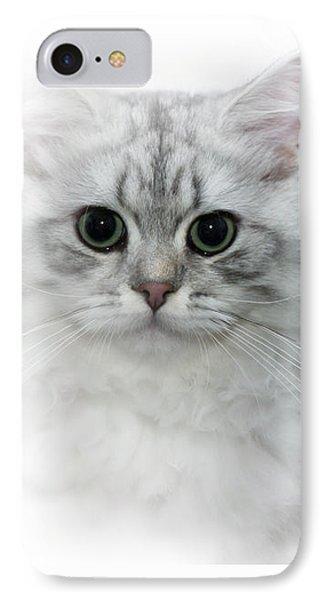British Longhair Cat Time Goes By Phone Case by Melanie Viola