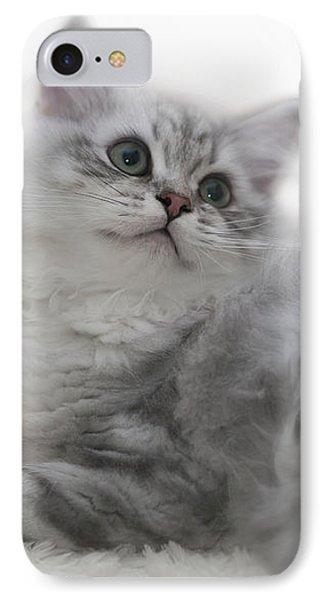 British Longhair Kitten Phone Case by Melanie Viola