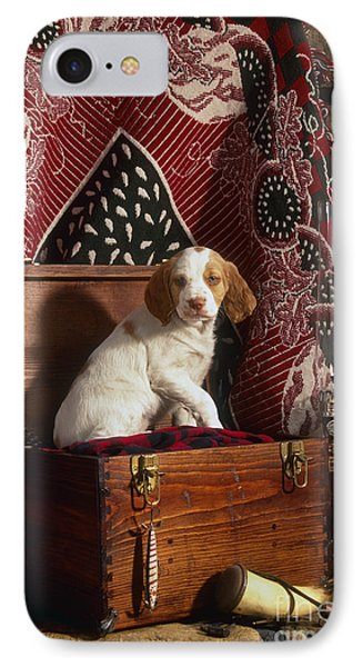 Brittany Pup - Fs000048 IPhone Case