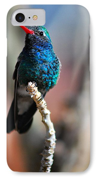 IPhone Case featuring the photograph Broad-billed Hummingbird by Barbara Manis