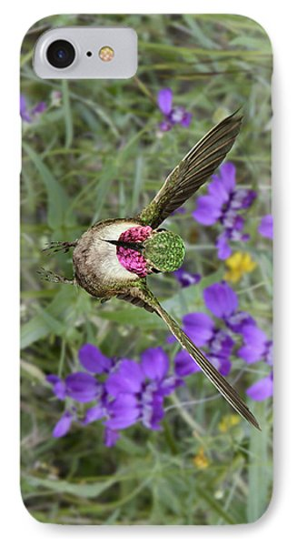 Broad-tailed Hummingbird - Phone Case IPhone Case by Gregory Scott