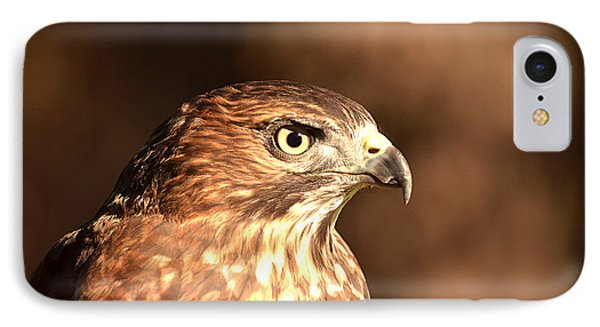 Broad-winged Hawk IPhone Case