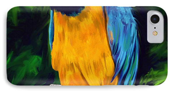 Brody Blue And Yellow Macaw Parrot IPhone Case by Julianne  Ososke