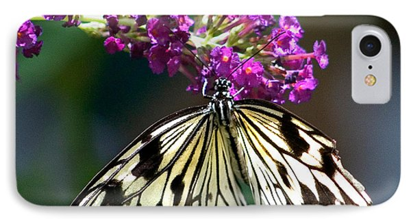 Broken Wing Of Black And White On Purple IPhone Case by Karen Stephenson