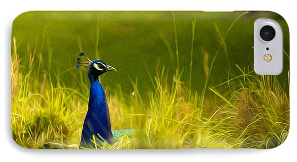 Bronx Zoo Peacock IPhone Case