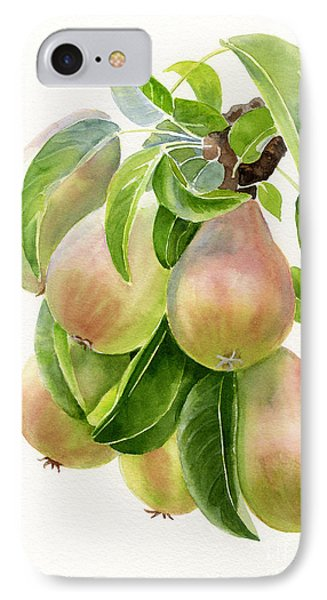 Bronze Pears With White Background IPhone Case