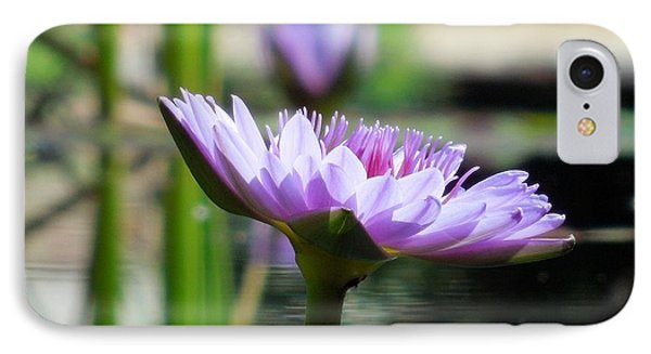 IPhone Case featuring the photograph Brookgreen Garden Water Lily by Chad and Stacey Hall