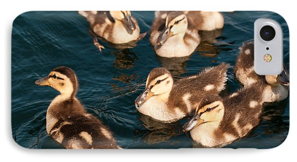 IPhone Case featuring the photograph Brothers And Sisters by Brenda Jacobs