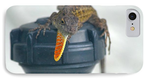 Brown Anole With Dewlap Phone Case by Richard Bryce and Family