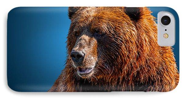 Brown Bear 2 IPhone Case by Brian Stevens