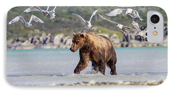 Brown Bear And Seagulls IPhone Case