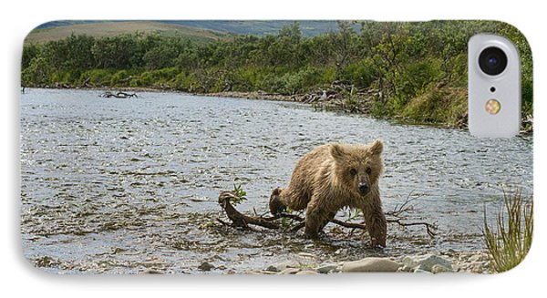 Brown Bear Cub Walking Up Stream Trying Keep Up With Mom Phone Case by Dan Friend