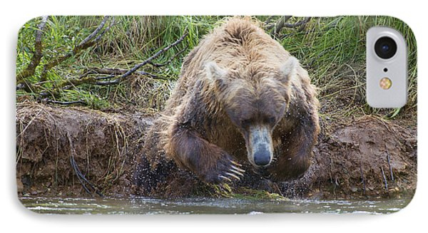 Brown Bear Diving Into The Water After The Salmon Phone Case by Dan Friend