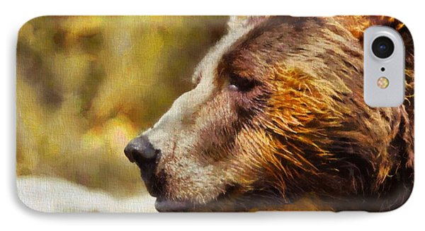 Brown Bear Painting IPhone Case