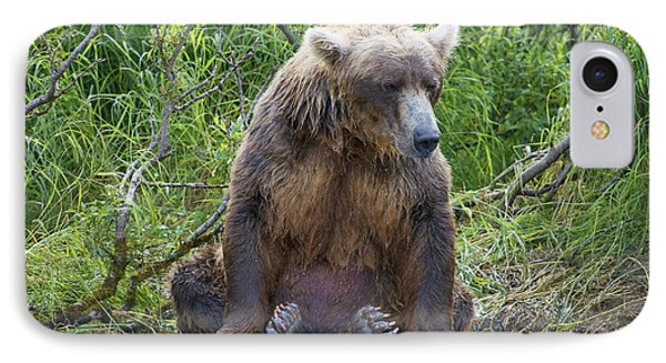 Brown Bear Sitting Waiting For Salmon Phone Case by Dan Friend