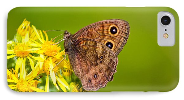 IPhone Case featuring the photograph Brown Butterfly by Adria Trail