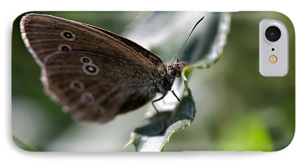 IPhone Case featuring the photograph Brown Butterfly On Leaf by Leif Sohlman