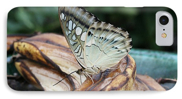 Brown Clipper Butterfly #3 IPhone Case