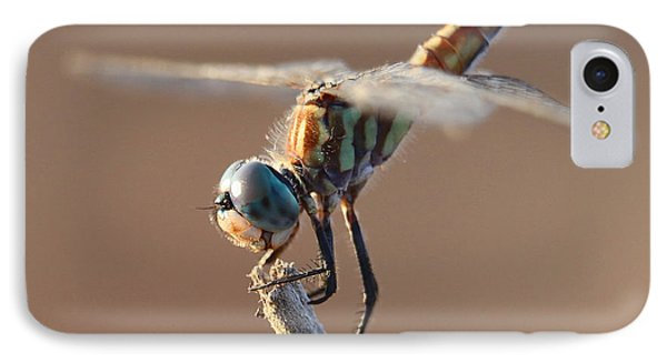 Brown Dragonfly IPhone Case