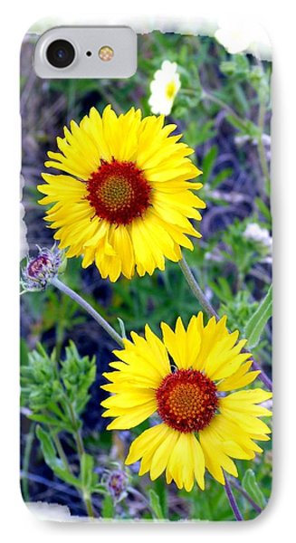 Brown- Eyed Susans IPhone Case by Will Borden