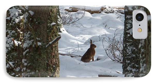 Brown Hare - Snow Wood Phone Case by Phil Banks