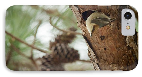 Brown Headed Nuthatch IPhone Case by Linda Unger