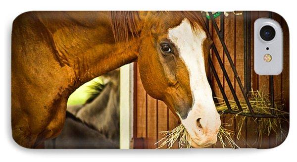 Brown Horse Phone Case by Joann Copeland-Paul