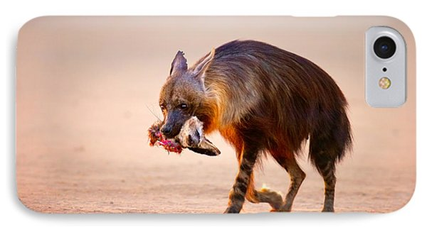 Brown Hyena With Bat-eared Fox In Jaws IPhone Case by Johan Swanepoel