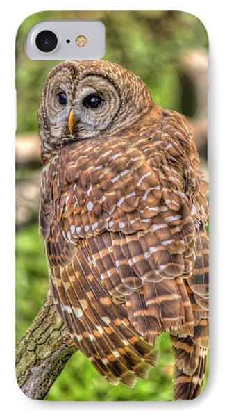 IPhone Case featuring the photograph Brown Owl by Donald Williams
