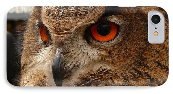 Brown Owl IPhone Case by Vicki Spindler