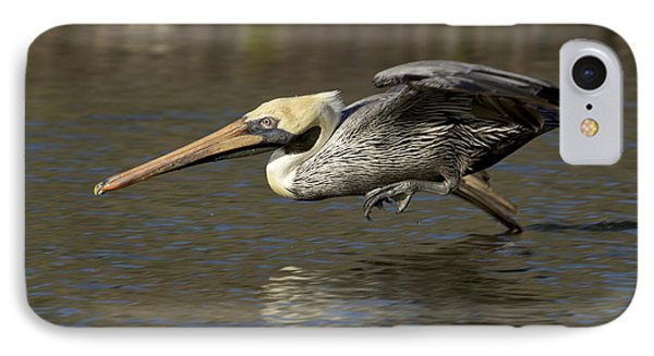 IPhone Case featuring the photograph Brown Pelican Fishing Photo by Meg Rousher