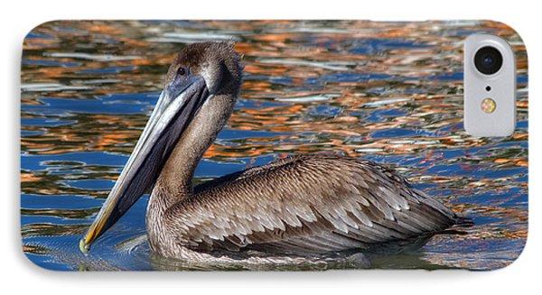 Brown Pelican - Florida Phone Case by Kim Hojnacki