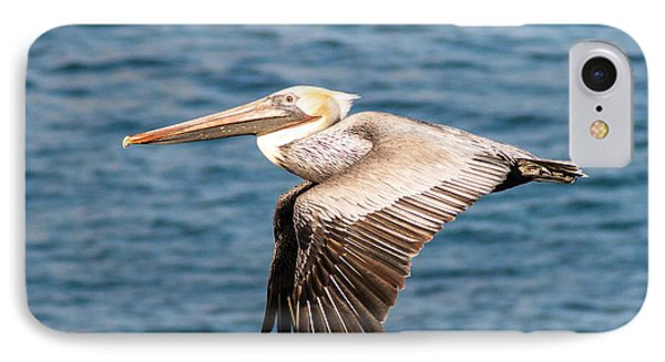 Brown Pelican Flying Phone Case by Darleen Stry