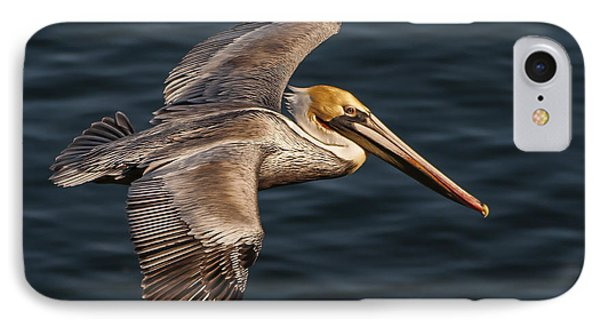 IPhone Case featuring the photograph Brown Pelican Flying by Lee Kirchhevel
