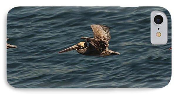 Brown Pelican Flying Panorama IPhone Case
